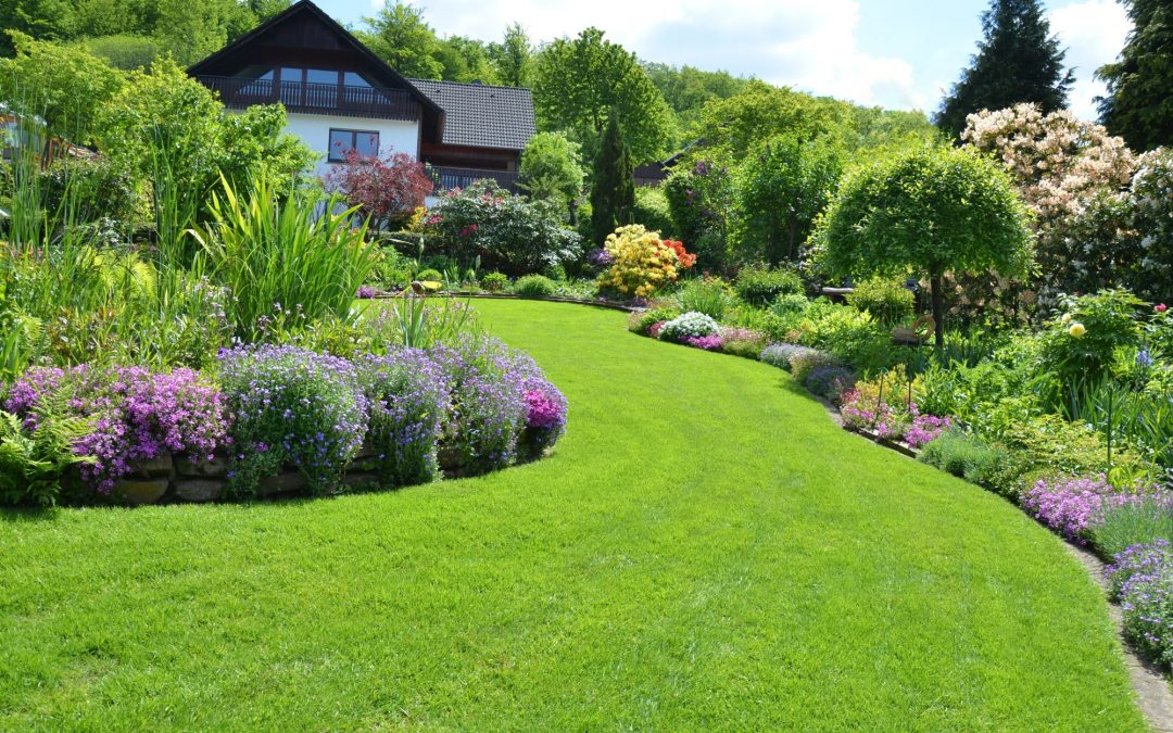 Choosing the Best Perennials for Hardscape Landscaping